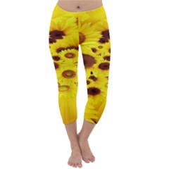 Beautiful Sunflowers Capri Winter Leggings