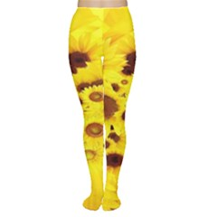 Beautiful Sunflowers Women s Tights