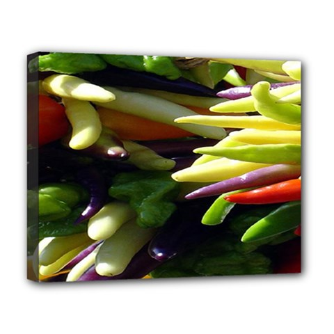 Bright Peppers Deluxe Canvas 20  X 16