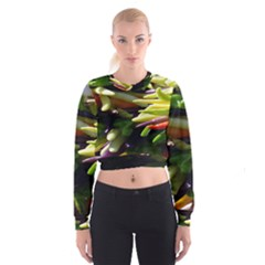 Bright Peppers Cropped Sweatshirt
