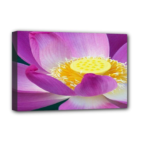 Pink Lotus Flower Deluxe Canvas 18  x 12