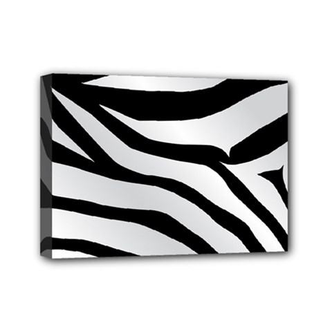 White Tiger Skin Mini Canvas 7  x 5