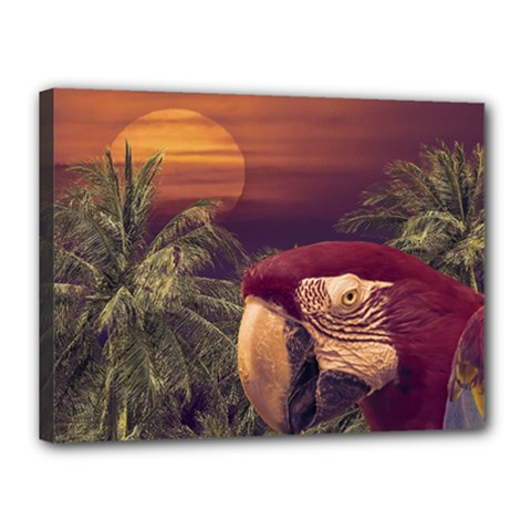 Tropical Style Collage Design Poster Canvas 16  x 12