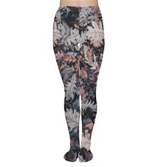 Leaf Leaves Autumn Fall Brown Women s Tights
