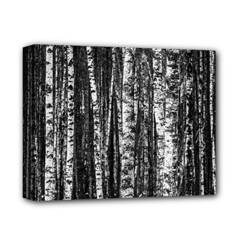 Birch Forest Trees Wood Natural Deluxe Canvas 14  X 11