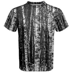 Birch Forest Trees Wood Natural Men s Cotton Tee