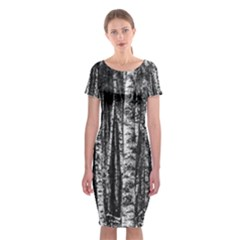 Birch Forest Trees Wood Natural Classic Short Sleeve Midi Dress
