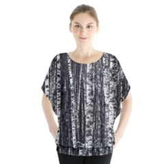 Birch Forest Trees Wood Natural Blouse
