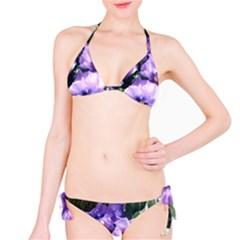 Purple Pansies Bikini Set