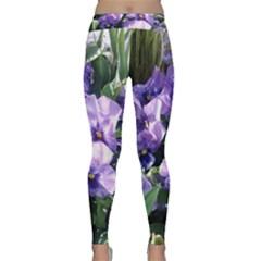 Purple Pansies Classic Yoga Leggings