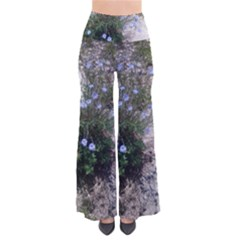 Purple Flowers On Boise River Pants