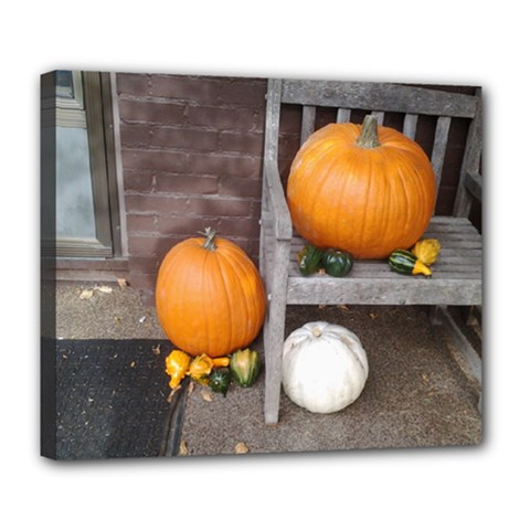 Pumpkins And Gourds Deluxe Canvas 24  x 20