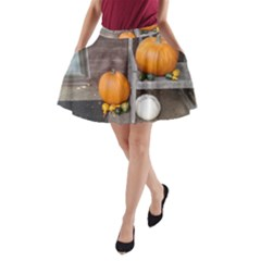 Pumpkins And Gourds A-Line Pocket Skirt