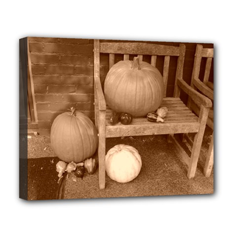 Pumpkins And Gourds Sepia Deluxe Canvas 20  x 16