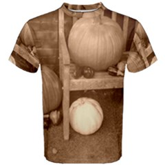 Pumpkins And Gourds Sepia Men s Cotton Tee