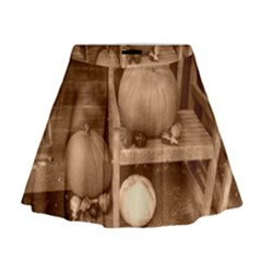 Pumpkins And Gourds Sepia Mini Flare Skirt