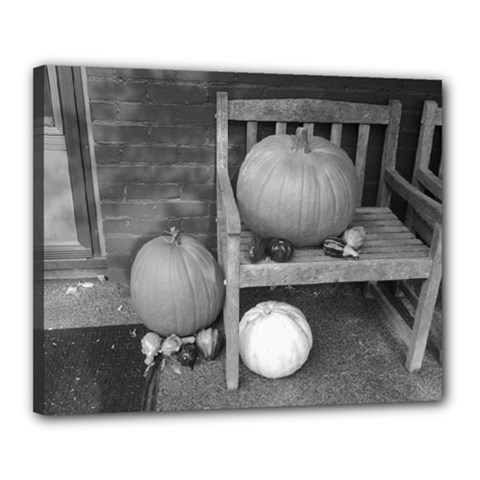 Pumpkind And Gourds Bw Canvas 20  x 16