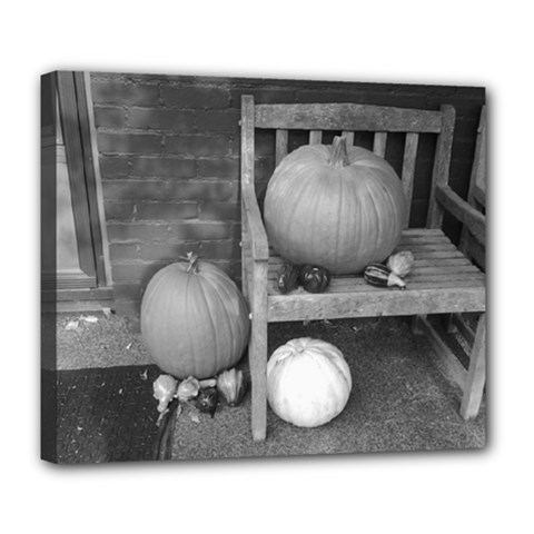 Pumpkind And Gourds Bw Deluxe Canvas 24  x 20