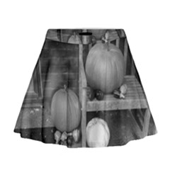 Pumpkind And Gourds Bw Mini Flare Skirt