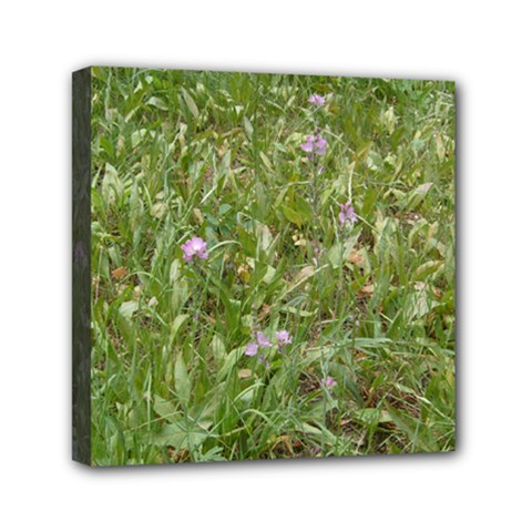 Pink Wildflowers Mini Canvas 6  x 6
