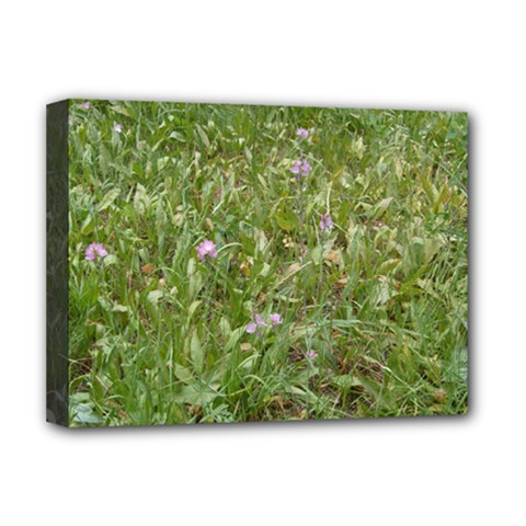 Pink Wildflowers Deluxe Canvas 16  x 12
