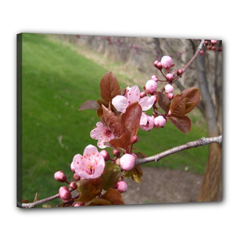 Pink Flowers  Canvas 20  x 16