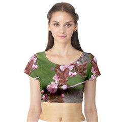 Pink Flowers  Short Sleeve Crop Top (Tight Fit)