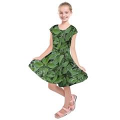 Texture Leaves Light Sun Green Kids  Short Sleeve Dress