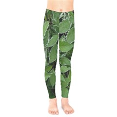Texture Leaves Light Sun Green Kids  Legging