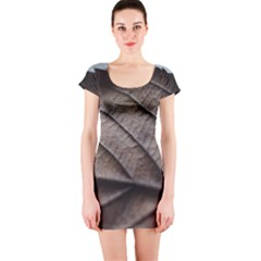 Leaf Veins Nerves Macro Closeup Short Sleeve Bodycon Dress