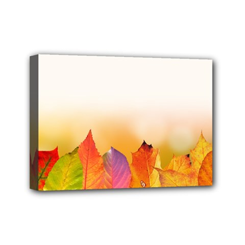 Autumn Leaves Colorful Fall Foliage Mini Canvas 7  x 5