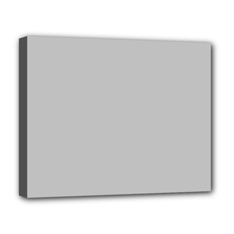 Solid Christmas Silver Deluxe Canvas 20  x 16