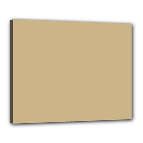 Solid Christmas Gold Canvas 20  x 16