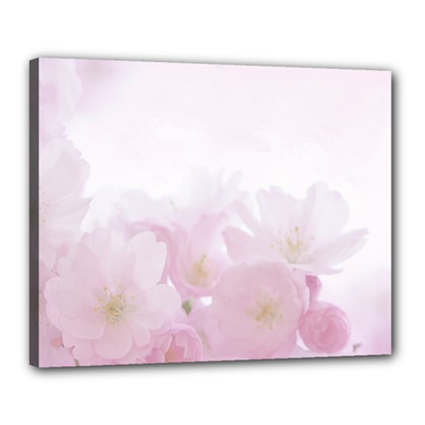 Pink Blossom Bloom Spring Romantic Canvas 20  X 16