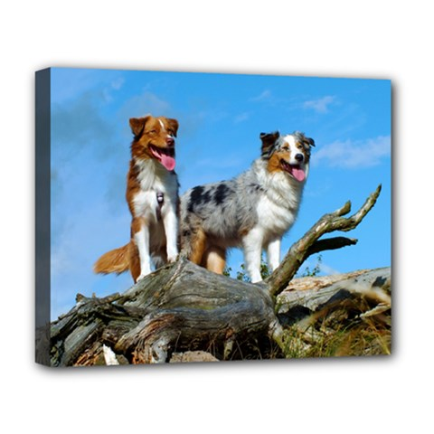 mini Australian Shepherd group Deluxe Canvas 20  x 16