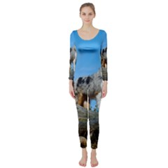 mini Australian Shepherd group Long Sleeve Catsuit