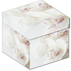 Orchids Flowers White Background Storage Stool 12