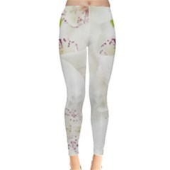 Orchids Flowers White Background Leggings