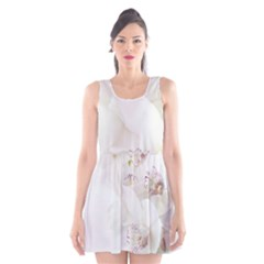 Orchids Flowers White Background Scoop Neck Skater Dress