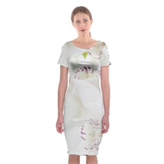 Orchids Flowers White Background Classic Short Sleeve Midi Dress