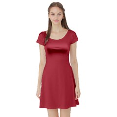USA Flag Red Blood Red classic solid color  Short Sleeve Skater Dress