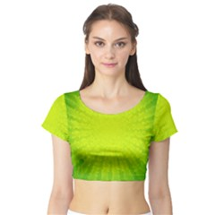 Radial Green Crystals Crystallize Short Sleeve Crop Top (Tight Fit)