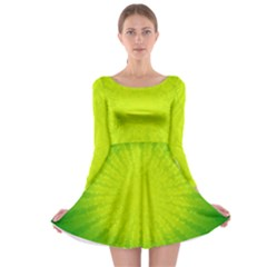 Radial Green Crystals Crystallize Long Sleeve Skater Dress