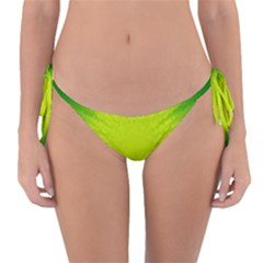 Radial Green Crystals Crystallize Reversible Bikini Bottom