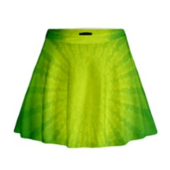 Radial Green Crystals Crystallize Mini Flare Skirt