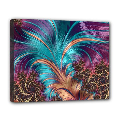 Feather Fractal Artistic Design Deluxe Canvas 20  x 16