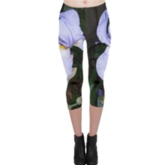 Bearded Iris Capri Leggings