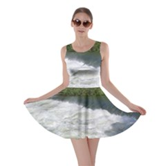 Boise River At Flood Stage Skater Dress