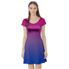 Bi Colors Short Sleeve Skater Dress