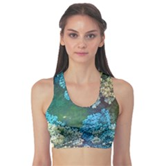 Fractal Formula Abstract Backdrop Sports Bra